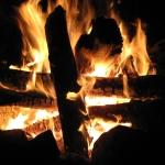 7 способов развести костер в лесу