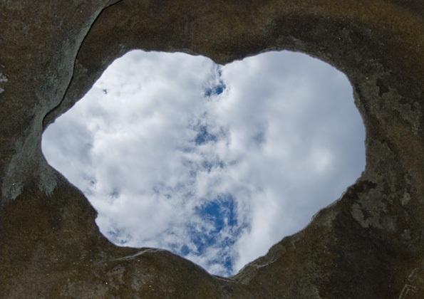 сердце изнутри