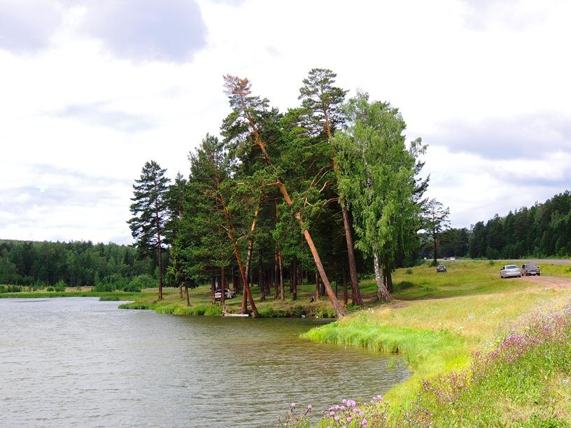 Придорожный пруд