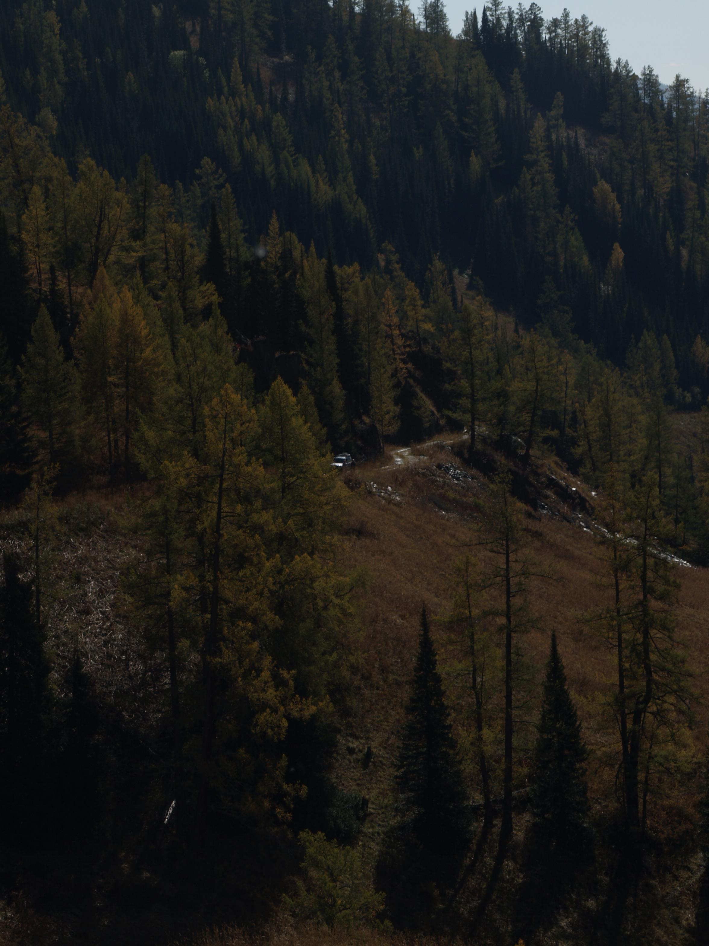 перевал Алтайский